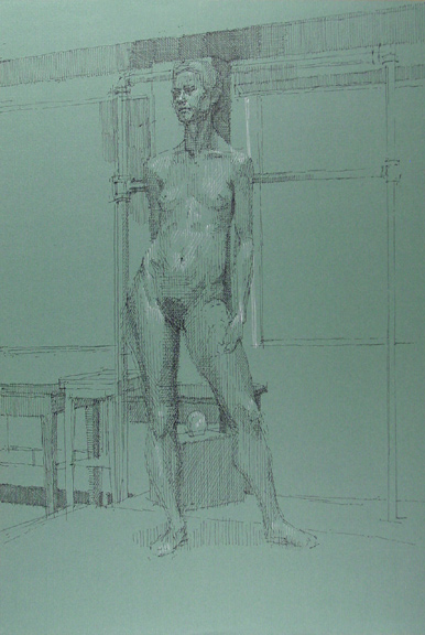Standing Female Nude Frontal View on Green Paper