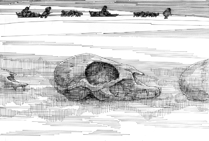 A Journey to the Arctic - Skull