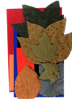 Leaf Collage II